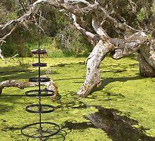 Wetland, Denmark WA by pennyswork