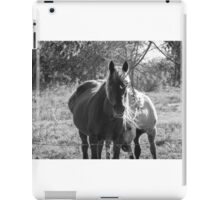 Mare and her Colt. iPad Case/Skin