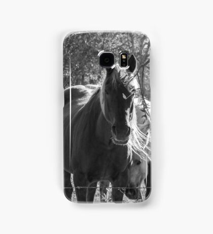 Mare and her Colt. Samsung Galaxy Case/Skin