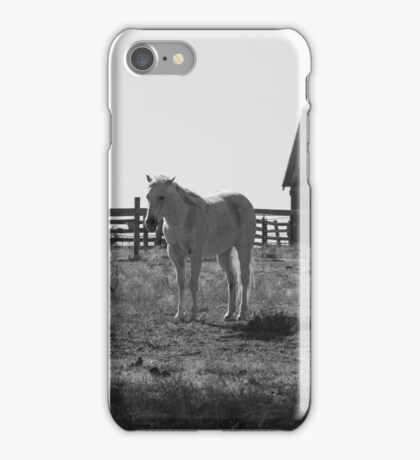 Standing sleeping Horse iPhone Case/Skin
