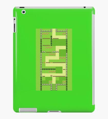 Route 1 - Pokemon iPad Case/Skin