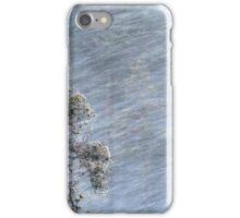 12.1.2017: Pine Tree in Blizzard iPhone Case/Skin