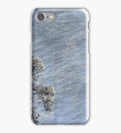 12.1.2017: Pine Tree in Blizzard iPhone Case/Skin