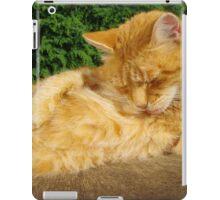Ginger cat licking fur on garden table iPad Case/Skin
