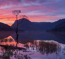 Buttermere Sunrise by Nick Atkin