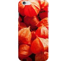 physalis iPhone Case/Skin