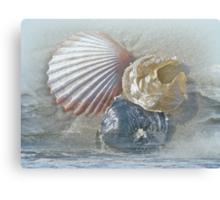 Spirit of the Sea - Seashells and Surf Canvas Print