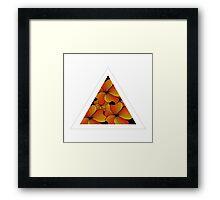 orange flowers in triangle Framed Print