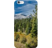 A Day In The Park With A View  iPhone Case/Skin
