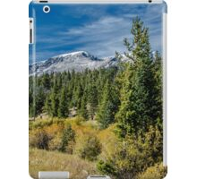 A Day In The Park With A View  iPad Case/Skin