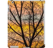 Caged Sunrise iPad Case/Skin