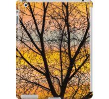 Caged Sunrise iPad Case/Skin