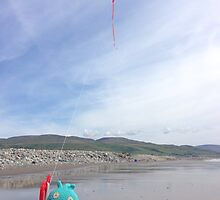 Birds Flies A Kite by FendekNaughton