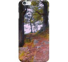 Fall Hike iPhone Case/Skin
