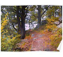 Fall Hike Poster