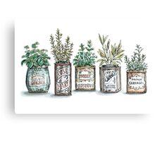 Herbs in Vintage Tins Canvas Print