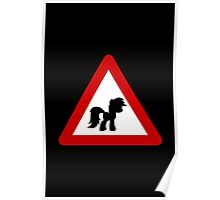 Pony Traffic Sign - Triangular Poster