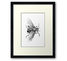 Flying Insect Framed Print