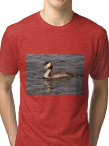 Great Crested Grebe Tri-blend T-Shirt