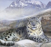 out of the wind-- snow leopard by R Christopher  Vest