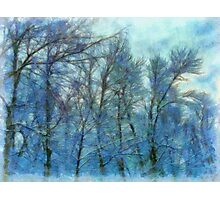 Winter Blue Forest Photographic Print