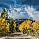 Changing Of The Colors - Colorado's New Coat by nikongreg