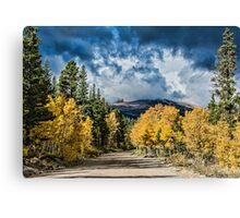 Changing Of The Colors - Colorado's New Coat Canvas Print