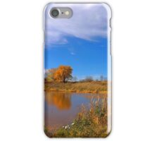 Forest Beach Migratory Preserve Pond iPhone Case/Skin