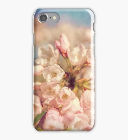 Pale Pink Cherry Blossoms iPhone Case/Skin