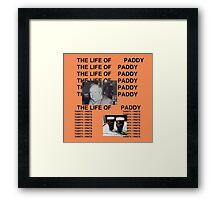 The Life of Pintman Framed Print