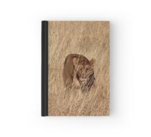 Lioness Stalking in the Serengeti Hardcover Journal