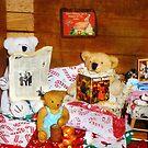 Technically my dear, teddy bears don't hibernate by Nadya Johnson