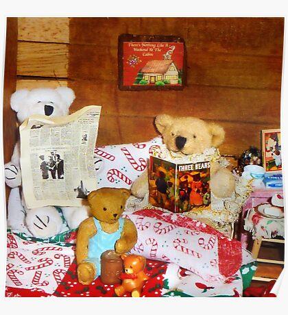 Technically my dear, teddy bears don't hibernate Poster