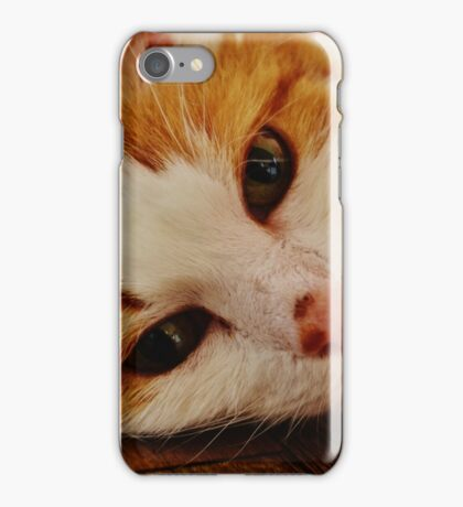 Purfect Picture iPhone Case/Skin