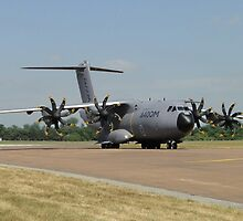 Grizzly A400M by Barrie Woodward