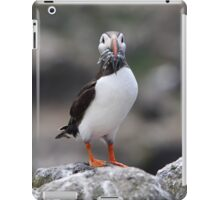Atlantic Puffin iPad Case/Skin