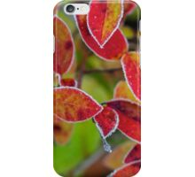 The Frozen blueberry leaves iPhone Case/Skin