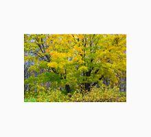 Maple colors in autumn Unisex T-Shirt