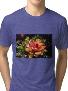 Dream Flower - Nature Photography  Tri-blend T-Shirt