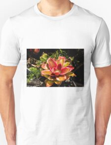 Dream Flower - Nature Photography  Unisex T-Shirt