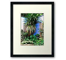 Small corner garden, Derry, Northern Ireland Framed Print