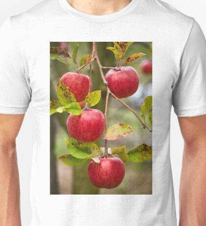 Closeup of red apples on branches Unisex T-Shirt