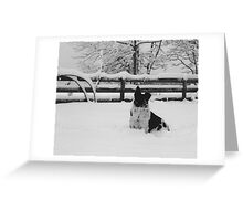 Snow dog (North Saanich, Vancouver Island, British Columbia, Canada) Greeting Card