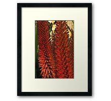 Red Tropical Spire Framed Print