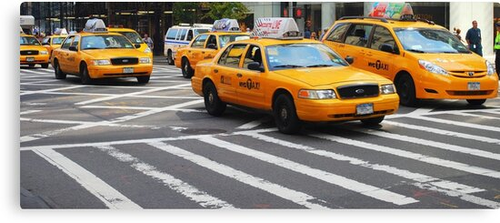 New York Taxis by Paul Finnegan