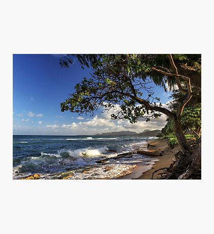 The Beach At Kapaa Photographic Print