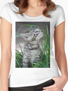Kitten in the Grass Women's Fitted Scoop T-Shirt