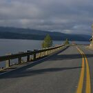 The curving roads by Amanda Huggins