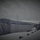 a bit of snow by Amanda Huggins