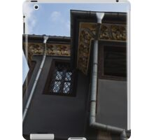 Silver Waterspouts and Richly Painted Eaves iPad Case/Skin